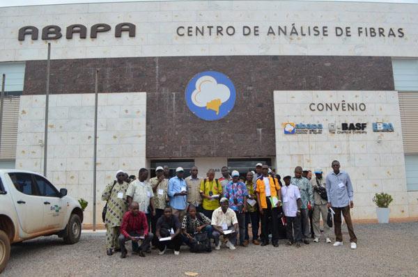 Os pesquisadores fazem parte do projeto Cotton 4+ Togo