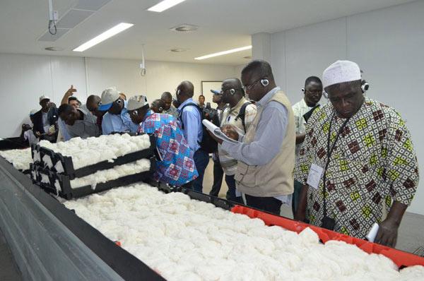 Durante a visita, os africanos conheceram o Sistema de Condicionamento Rápido do Laboratório da Abapa