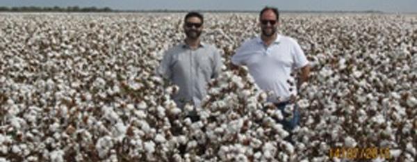 Fazenda Canel/Lavoro – Mun. Uruçuí (PI) - Denilson Galbero e Sérgio Luís Bortolozzo Júnior – Sócio-proprietário da Fazenda
