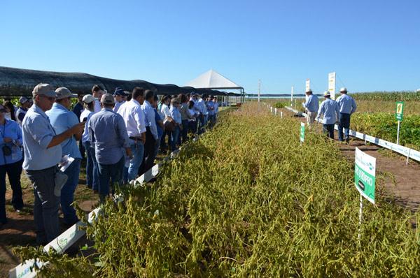 O Evento aconteceu no Campo Experimental da Fundação Bahia