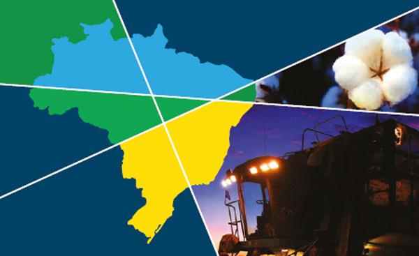 Onze empresas asiáticas visitarão fazendas produtoras e algodoeiras no oeste da Bahia